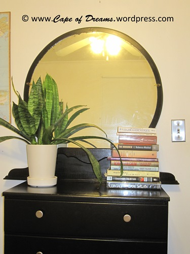Mirror and dresser with books and plant